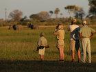 Botswana Private Safari