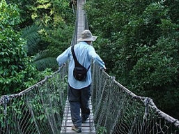 Montverde National Park, Costa Rica