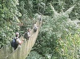 Monteverde National Park, Costa Rica