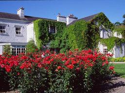 Boundless Journeys - Irish hospitality