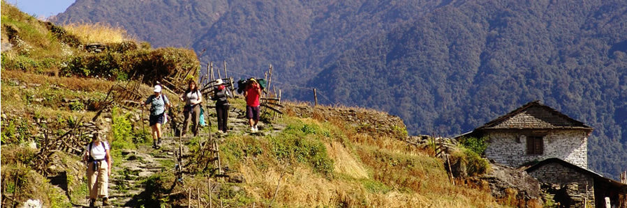 Nepal: Private Trekking and Tiger Safari