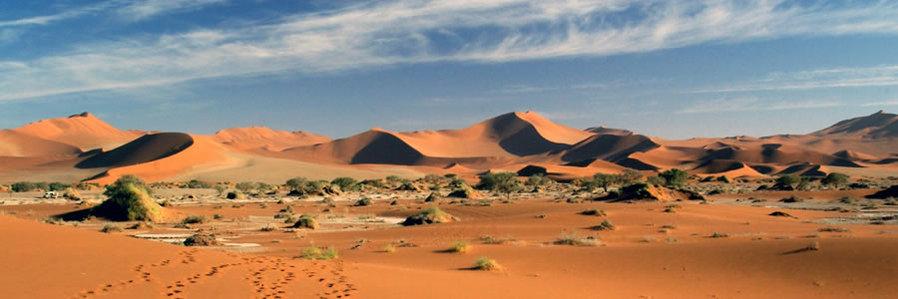 Africa, Nambia Safaris