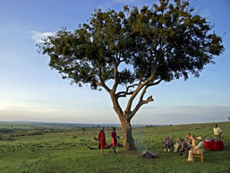 Tanzania Safari Company Boundless Journeys