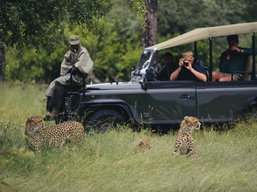 private safari to Tanzania