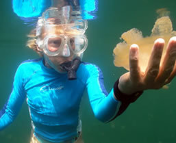 Palau snorkeling - Boundless Journeys