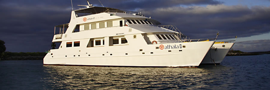 The Athala II New Years Cruise - Galapagos Islands
